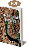 Healing the Land Supernaturally front cover